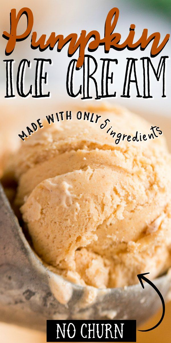 Pumpkin Ice Cream Pumpkin Ice Cream Pumpkin Ice Cream Recipe Dairy Free Pumpkin Ice Cream