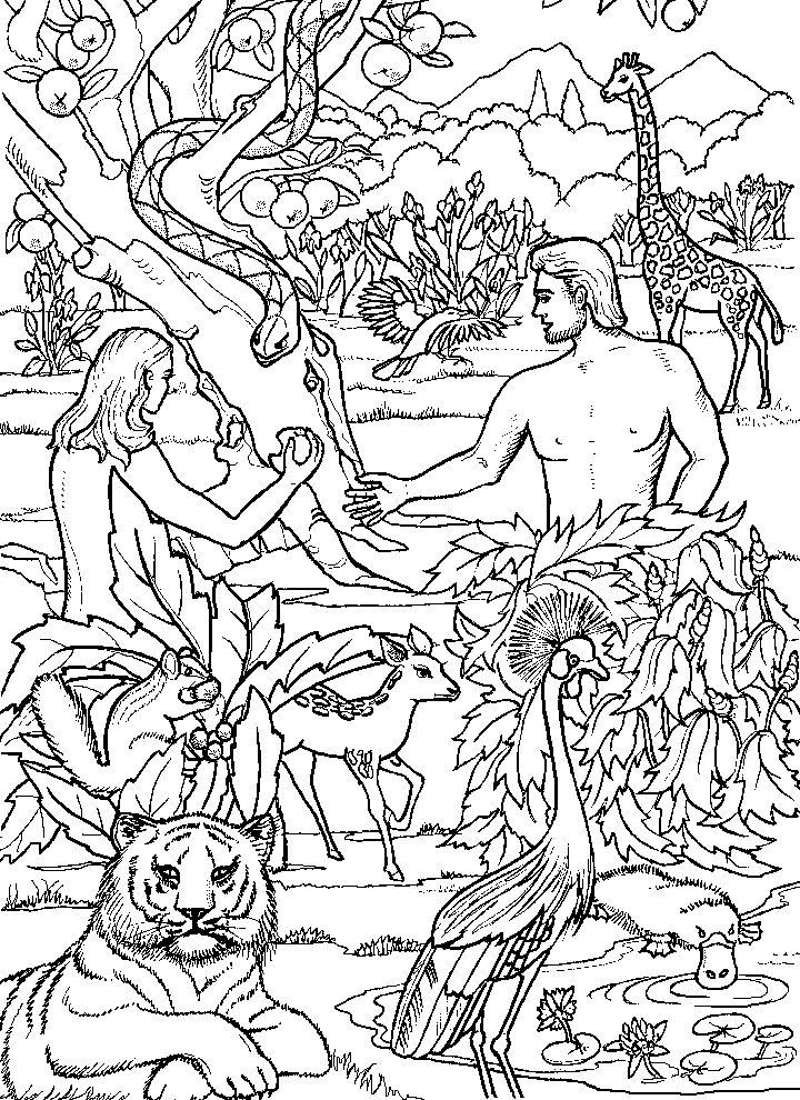 Картинки адам и ева для детей