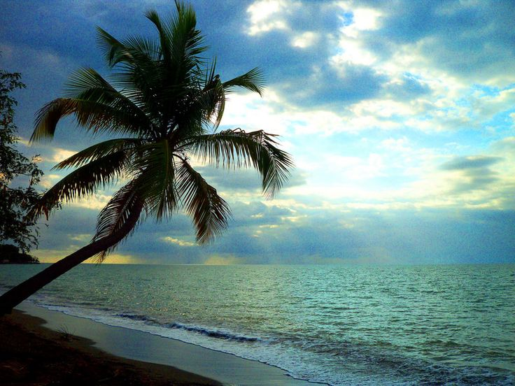 167 best mayaguez mi pueblo amado images on pinterest for Puerto rico vacation ideas