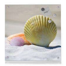 1203 Design Pinnwand Magnettafel Magnetwand Glas Foto Bild Motiv Muscheln Strand