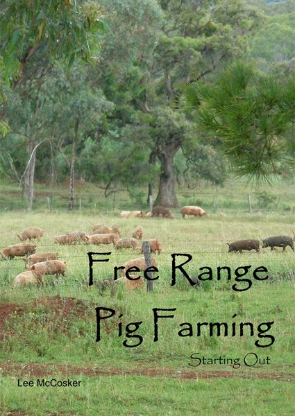 Australian Free Range Pastured Pig Farmers - Getting Started