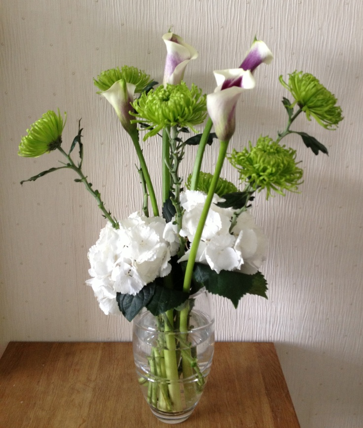 Contemporary vase of Calla Lilies, Shamrock Chyrsanths and Hydrangea