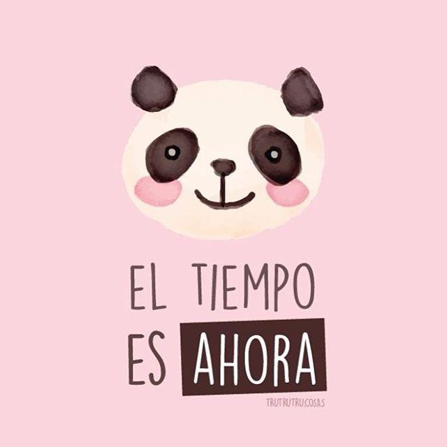 """🐼 """" El tiempo es ahora""""  Regalo con ♥️ para @evelyncarmona  @frases_sabrosavida  .  .  .  #ilovepanda #trutrutru  #eltiempoesahora  #vivir #sonreir #panda #pastel  #sabrosavida #rosado #vueltaalsol #in #inspiration  #funnymemes  #cute #pretty #watercolor #pandas"""
