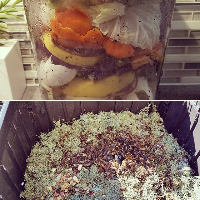 Diy Compost Bin Apartment: 25+ Best Ideas About Outdoor Compost Bin On Pinterest