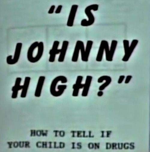 maybe i'm high if I can't remember I don't have a kid named johnny.