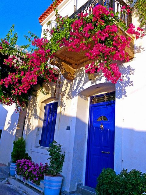 bodrum's hause with flowers