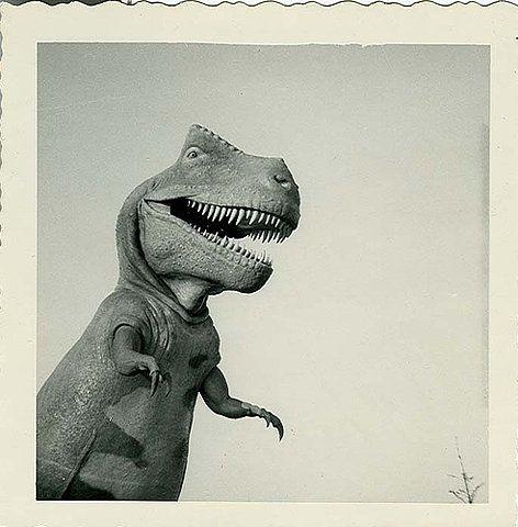 Dino!!!
