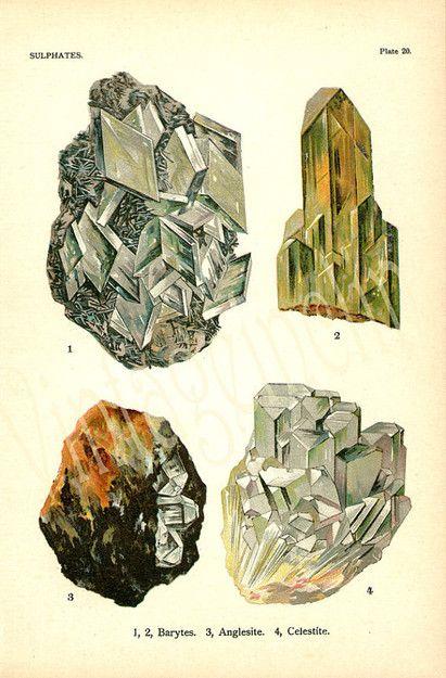 Vintage 1911 Minerals Print Antique Gems Precious Stones print gemstones print, bookplate art print, minerals wall print wall art ($18.50) - Svpply