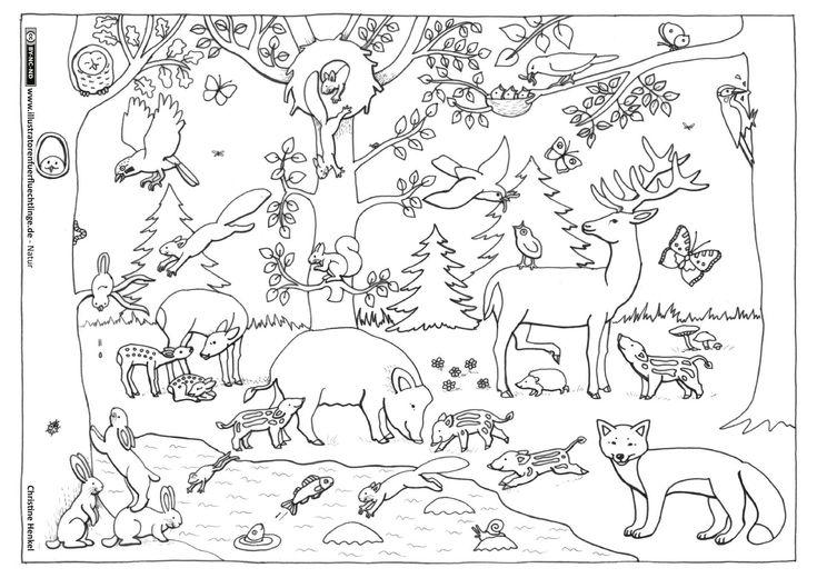 natur wald herbst tiere malvorlage kindergarten  natur