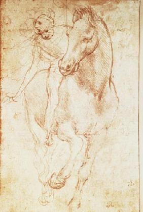 Leonardo da Vinci - Horse and Rider (silverpoint)