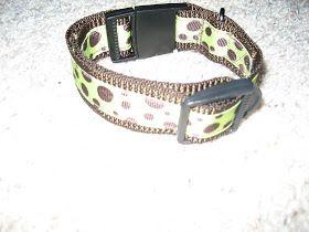 Sean and Nicole: DIY dog collar and leash