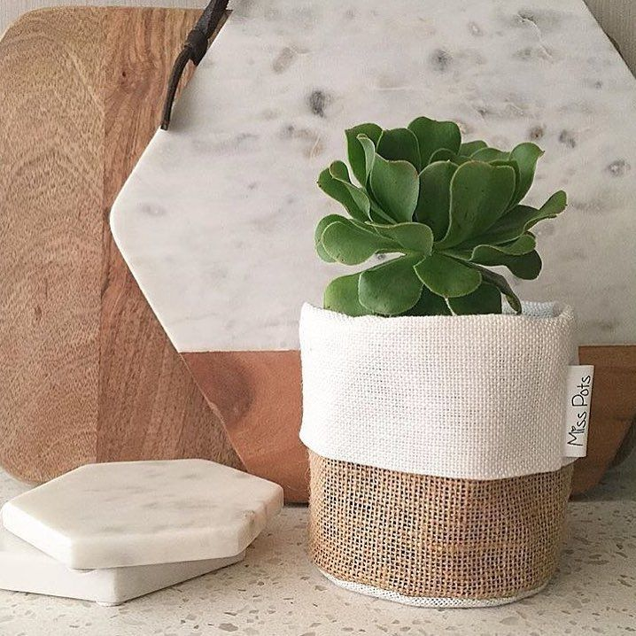 New delivery of our fave @misspotspouches has just arrived at Kilsyth this morning!!  #fabricpouch #plantpouch #fabricpot #misspots #plants #homewares #dcbdesigns