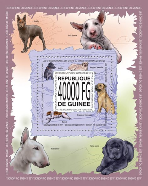 GU 13513 b	Dogs of the world, (Kelpie, Anatolian Shepherd Dog, Mallorca mastiff, Barzoi).