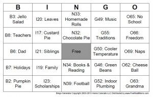 DIY Bingo generator!  You put anything you want in and it mixes them all around for custom cards--great for parties, holidays, and school activities.