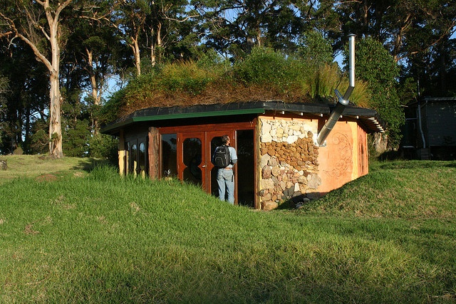 Earth-sheltered octagonal home with living roof.