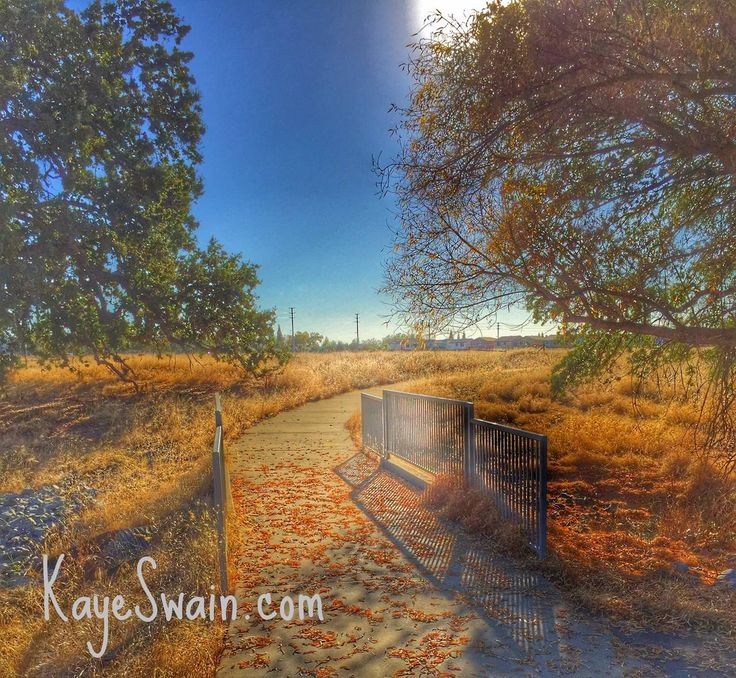 One of the many lovely trails in Roseville CA