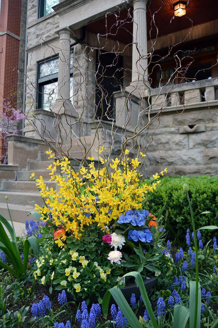 40 Best Topiarius Spring Annuals Images On Pinterest 640 x 480