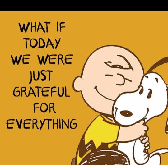"""What if today we were just grateful for everything"", Charlie Brown and Snoopy"