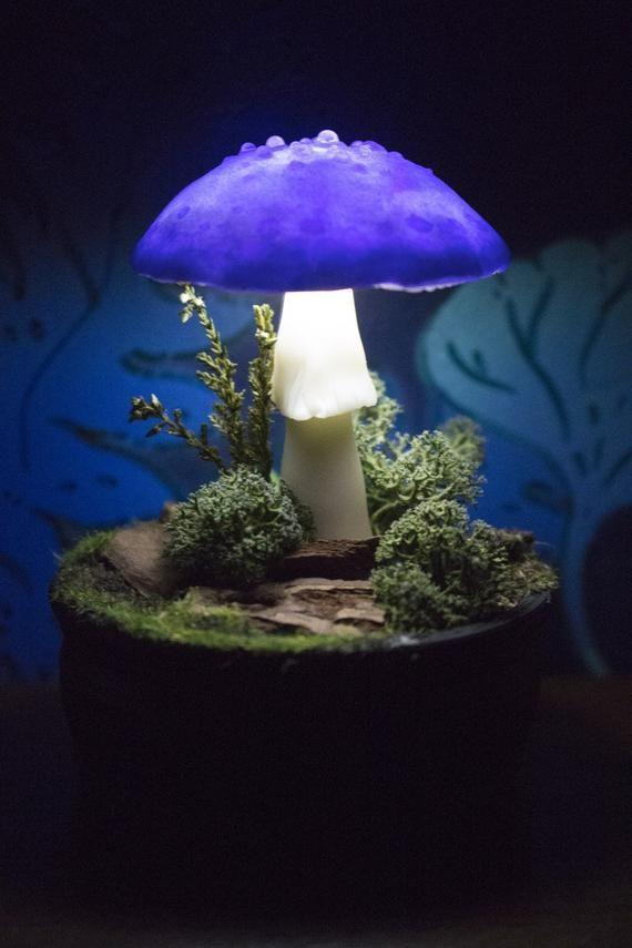 Pin By Geneva Allen On Ceramic Ideas In 2020 Mushroom Lights Mushroom Decor Mushroom Lamp