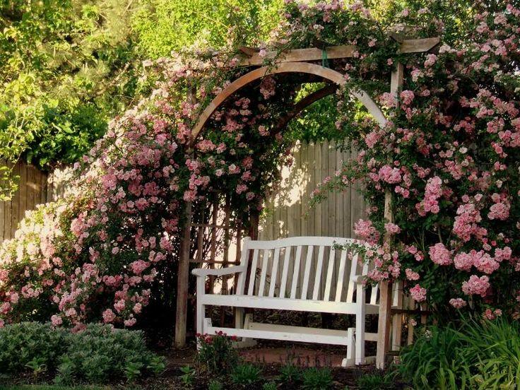 I love old fashioned climbing rose arbors... so romantic.