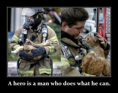 Heroes ♥