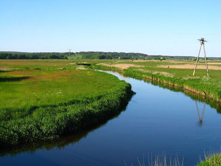 Biała River near Białystok
