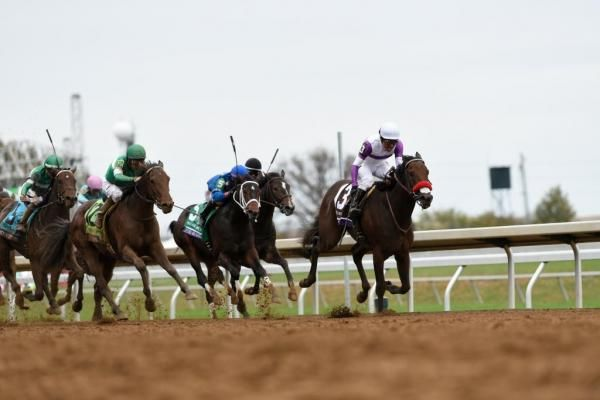 2016 Kentucky Derby field: Nyquist, Shagaf, Suddenbreakingnews, Majesto - UPI.com