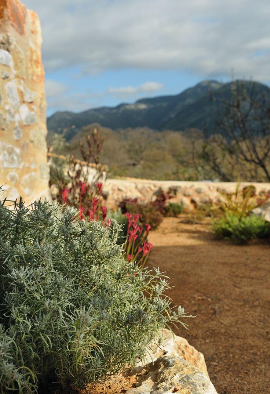 #garden #Eleanthi