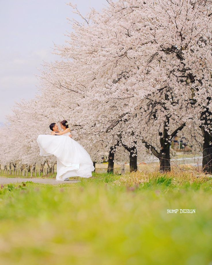 #長野ロケーション前撮り . . 今日は長野県でロケーション後撮り . まさかこんなに桜が満開なんて . . 秋に同じく長野で紅葉ロケーション前撮りして . ハワイで挙式とロケ撮影撮らせてもらって . さらに今日の後撮り . . たくさんご一緒できて本当にしあわせです . . . #なんでもない河原のさくら達 #おそるべし長野のポテンシャル #ここで毎年撮りたい . #結婚写真 #花嫁 #プレ花嫁 #卒花 #結婚式 #結婚準備 #ロケーション前撮り #カメラマン #ウェディング #前撮り #結婚式前撮り #写真家 #ゼクシィ #名古屋花嫁 #和装前撮り #持ち込みカメラマン #ウェディングフォト #2017春婚 #結婚式レポ #アサダユウスケ #赤いカメラ #日本中のプレ花嫁さんと繋がりたい #日本中の卒花嫁さんと繋がりたい #ウェディングニュース #weddingphoto #バンプデザイン