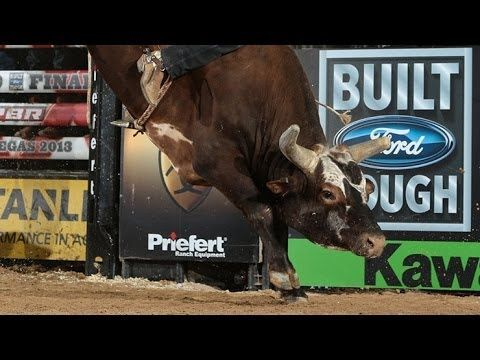 ▶ TOP BULL SCORE: Bushwacker post a bull score of 46.50 points (PBR) - YouTube PBR finals round 2. Regardless of not getting a score, proud he rode him for the 8 sec!