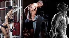 5 Top-Übungen für den Trizeps - Muskelaufbau