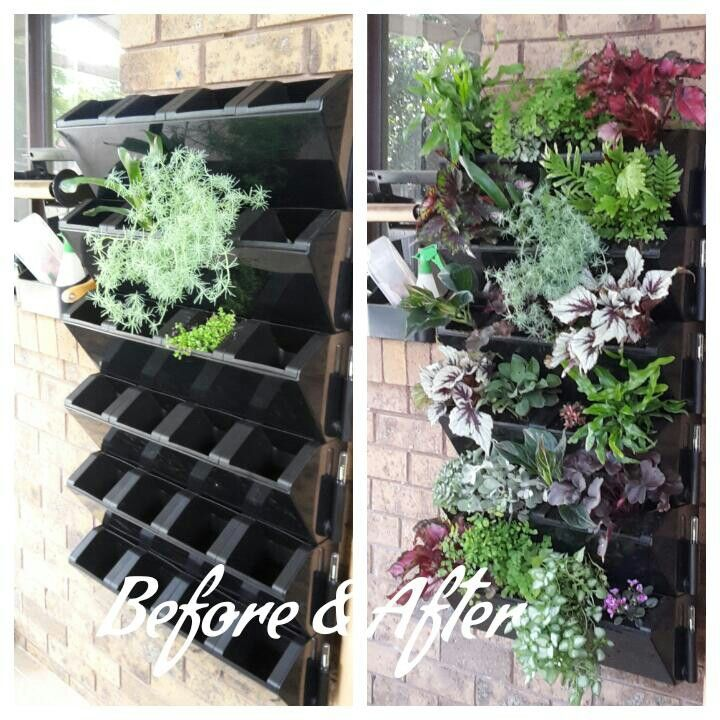My Vertical Garden. Created Using Ideas I Saw On Pinterest. The Black  Plastic Pots Are A Vertical Garden Kit From Flower Power. It Is Also A Self  Watering ...