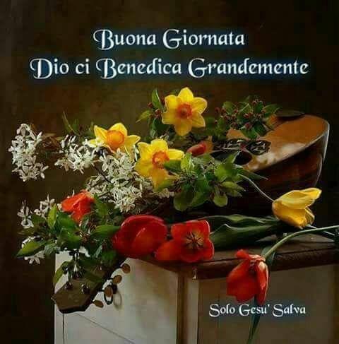 Pin di Bruna Ballesio su Buongiorno con Dio | Plants ...