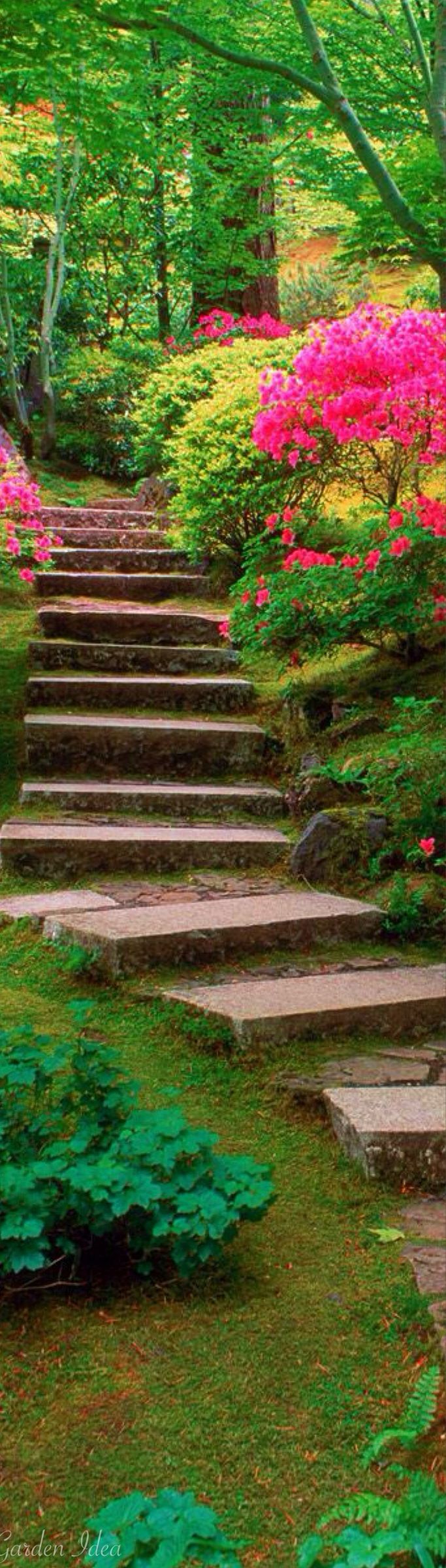 Not much more inviting than a stone staircase surrounded by pretty.
