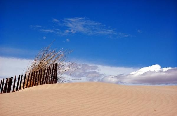 Dunes de Sable, Port Camargue