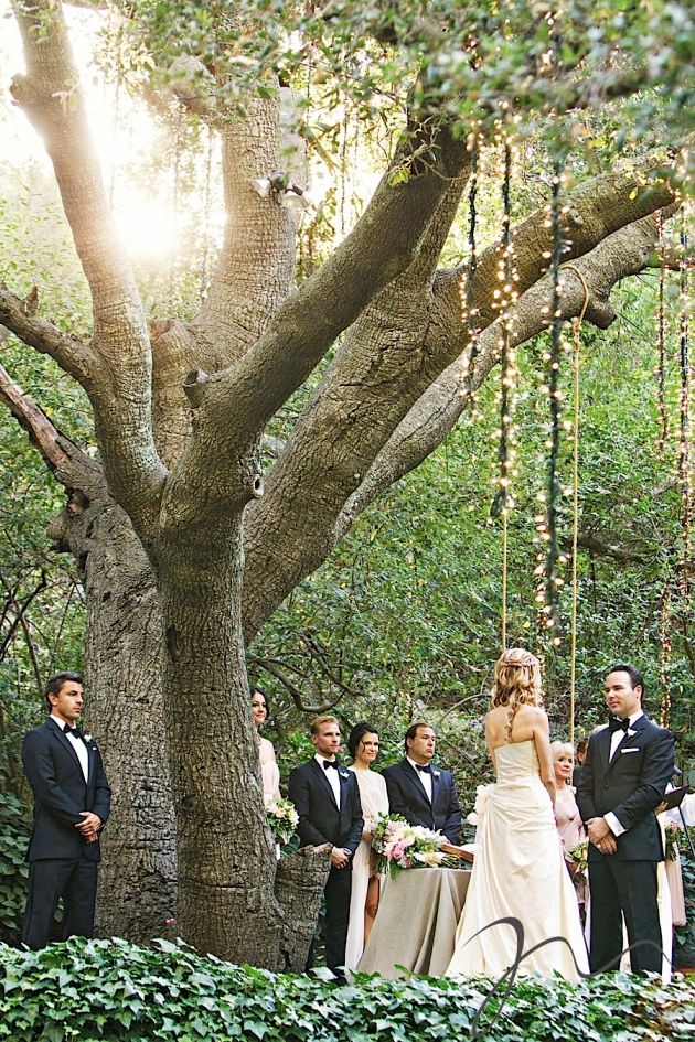 Beautiful Outdoor Intimate Wedding Ceremony with Hanging