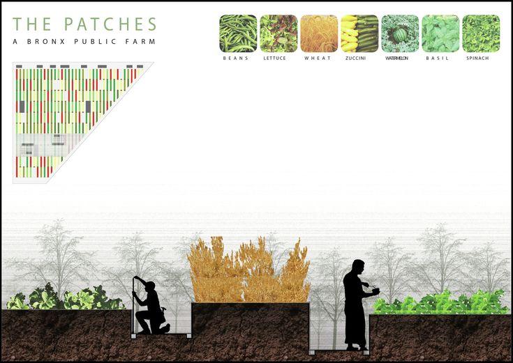 Bronx Public Farm and Orchard / Alexandros Avlonitis