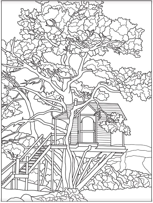 Vacation Treehouse Colorish App Coloring Book App For