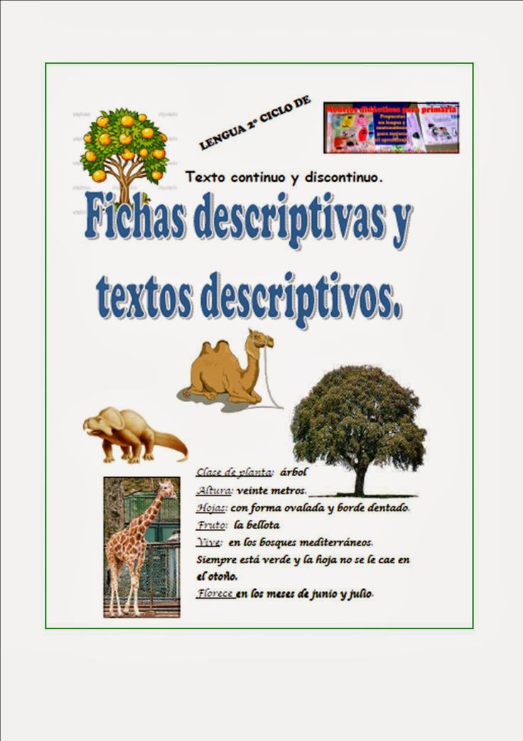 22 best Texto descriptivo images on Pinterest | Spanish