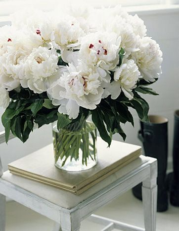 Flowers add that special something to any room in the house. White peonies are my favorite because they remind me of my wedding last Spring!