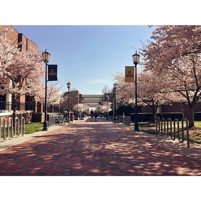 Virginia Commonwealth University (VCU) in Richmond, VA