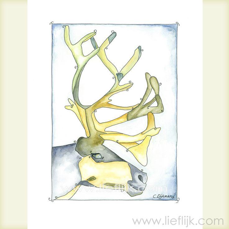 Poster Aquarel Rendier --  een print van het originele aquarel. Een afbeelding van een relaxt, stoer en aardig rendier in een prachtige kleurstelling. Deze poster is een mooi cadeau voor jezelf of voor een ander. Je kunt de poster zo ophangen, of inlijsten.  Details: Afbeelding: ca.28 cm x 20 cm Papier: 29,7cm x 21 cm (A4 formaat) Papierdikte: 250gr, mat Het watermerk wordt vanzelfsprekend niet afgedrukt! www.lieflijk.com