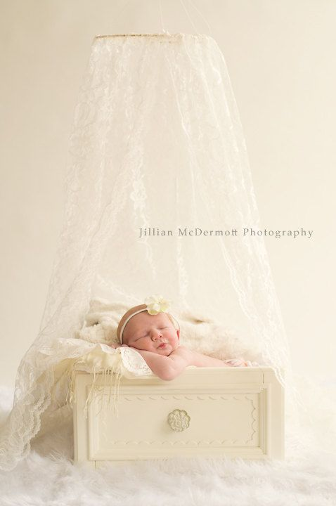 Ivory Lace Canopy with ring to hang.  Perfect for Photo Props, cribs or beds.