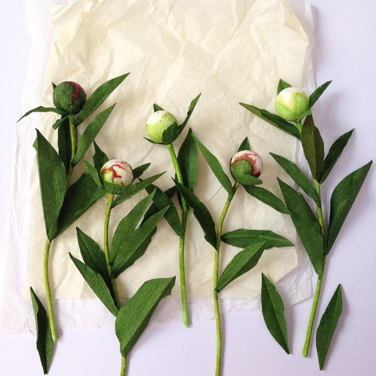 Paper Flowers- peony buds by A Petal Unfolds