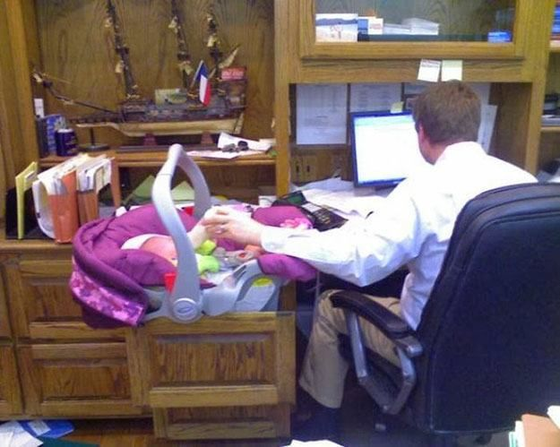 The Real Home Office You'll Laugh At These People & Animals Who Do Multi-Tasking Like Pros • Page 4 of 6 • BoredBug