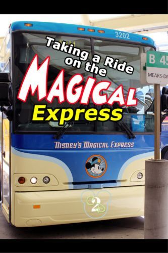 One of the perks to staying on site during your Disney World Vacation is taking the Magical Express Bus From The Airport to Walt Disney World.One of the perks to staying on site during your Disney World Vacation is taking the Magical Express Bus From The Airport to Walt Disney World.