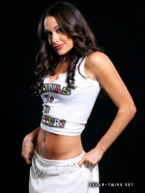 Brie Bella Cinco De Mayo 2011 WWE Photo Shoot