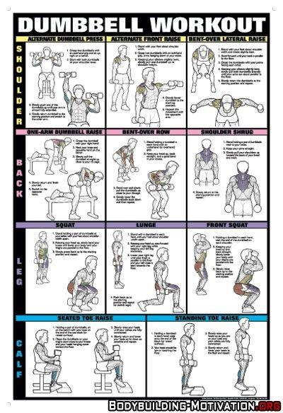 dumbbell_workout_shoulders_back