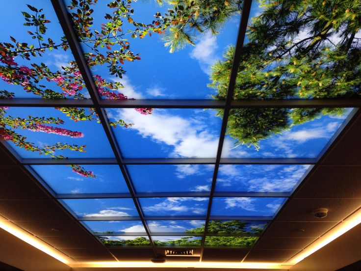 Sky ceiling lighting design pinterest ceilings for Nature decor