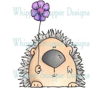 #Cute Hedgehog.